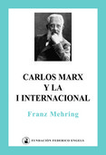 mehring marx internacional color